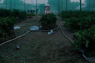Farming-Methods